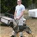 Man Doing K-9 Training with Dog