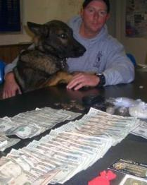 Police Officer and Dog Looking at Drug Bust